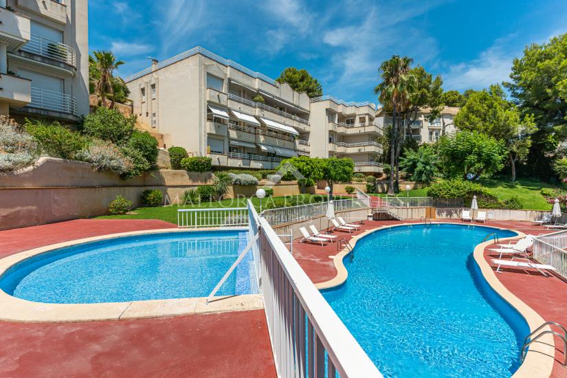 property-for-sale-in-mallora-cas-catala-calvia--MP-1041-00.jpg