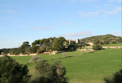 property-for-sale-in-mallora-manacor-rural-nw-manacor--MP-1106-11.png