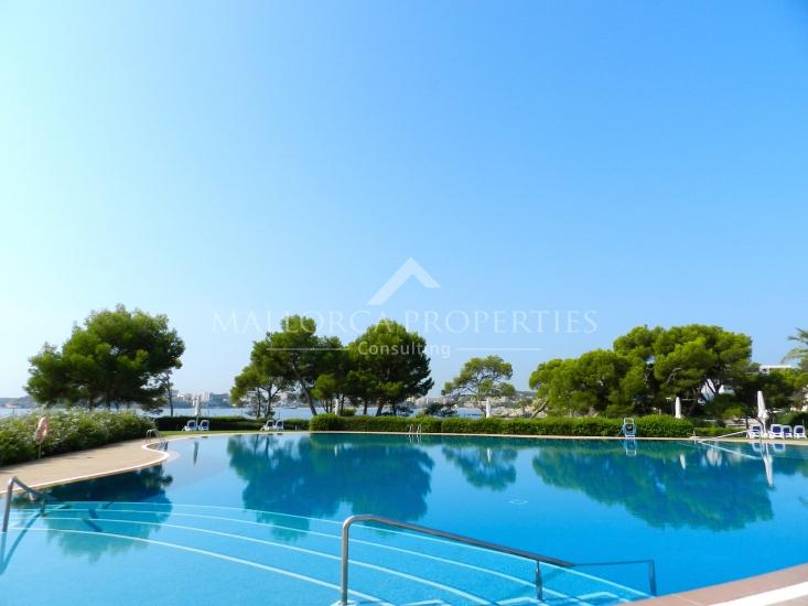 property-for-sale-in-mallora-costa-d-en-blanes-calvia--MP-1173-13.jpg