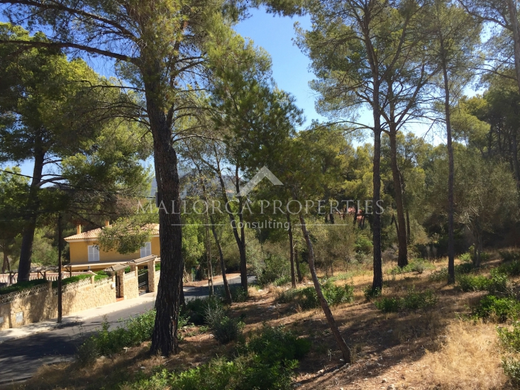 property-for-sale-in-mallora-santa-ponsa-calvia--MP-1201-02.jpg