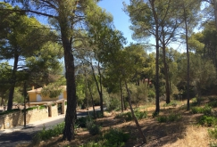 property-for-sale-in-mallora-santa-ponsa-calvia--MP-1202-02.jpg