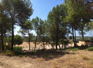 Property for Sale in Mallora Santa Ponsa ( Calvi?