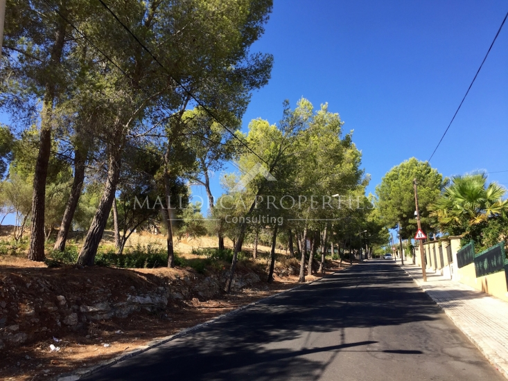 property-for-sale-in-mallora-santa-ponsa-calvia--MP-1205-03.jpg