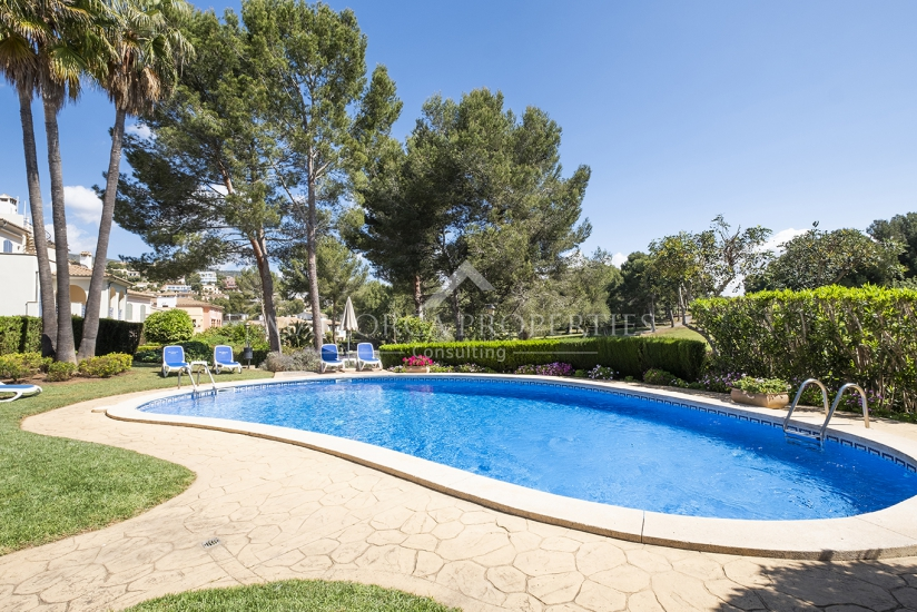 property-for-sale-in-mallora-bendinat-calvia--MP-1245-23.jpg
