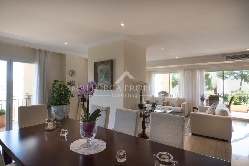 property-for-sale-in-mallora-bendinat-calvia--MP-1273-18.jpg