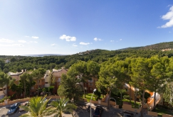property-for-sale-in-mallora-bendinat-calvia--MP-1293-07.jpg