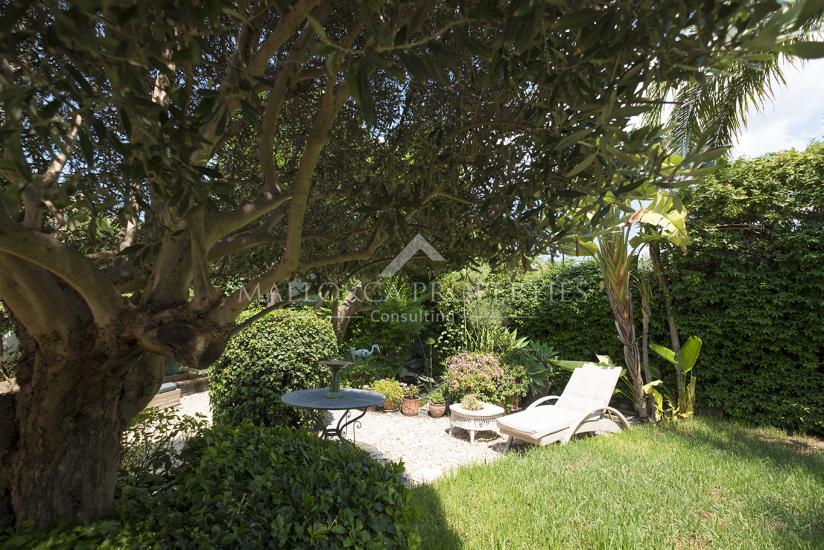 property-for-sale-in-mallora-andratx-andratx--MP-1332-22.jpg