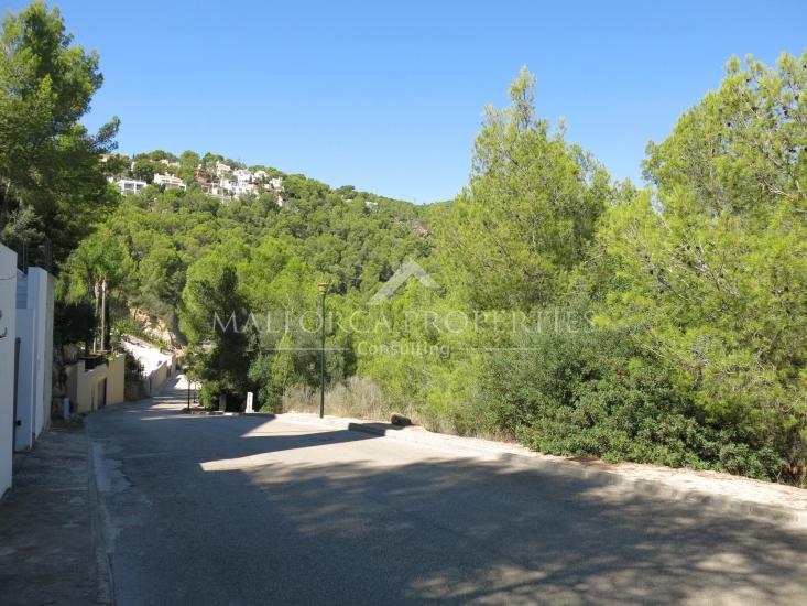 property-for-sale-in-mallora-costa-d-en-blanes-calvia--MP-1345-00.jpg