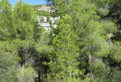 property-for-sale-in-mallora-costa-d-en-blanes-calvia--MP-1345-02.jpg