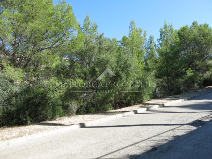 property-for-sale-in-mallora-costa-d-en-blanes-calvia--MP-1346-00.jpg