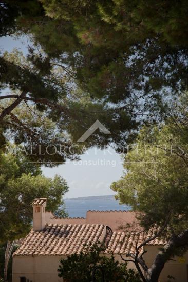property-for-sale-in-mallora-bendinat-calvia--MP-1363-15.jpeg