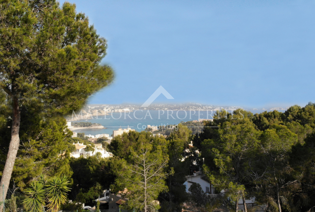 Property for Sale in Mallora Peguera ( Calvià )