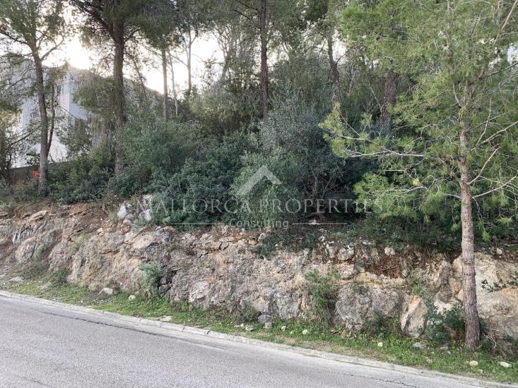 property-for-sale-in-mallora-costa-d-en-blanes-calvia--MP-1389-12.jpg