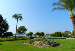 property-for-sale-in-mallora-costa-d-en-blanes-calvia--MP-1395-21.jpg