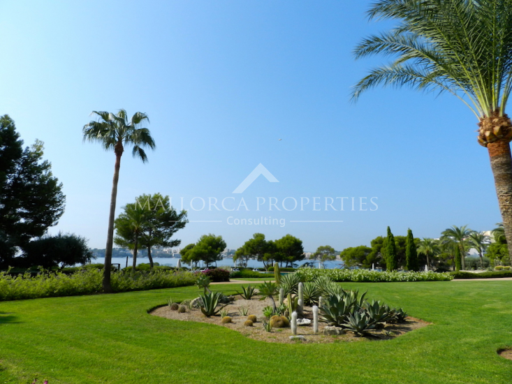 property-for-sale-in-mallora-costa-d-en-blanes-calvia--MP-1395-21.jpg