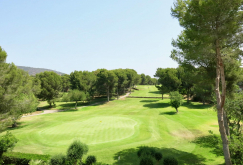 property-for-sale-in-mallora-bendinat-calvia--MP-1410-13.jpeg