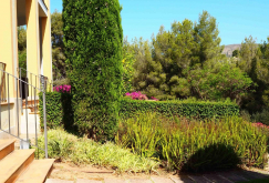 property-for-sale-in-mallora-bendinat-calvia--MP-1420-15.jpg