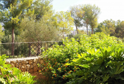 property-for-sale-in-mallora-bendinat-calvia--MP-1420-22.jpg