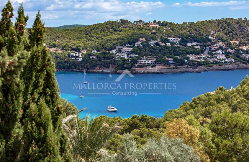 property-for-sale-in-mallora-camp-de-mar-andratx--MP-1422-12.jpg