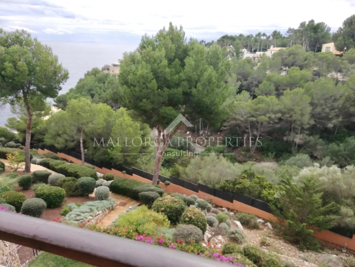 property-for-sale-in-mallora-sol-de-mallorca-calvia--MP-1445-14.jpeg