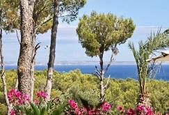property-for-sale-in-mallora-sol-de-mallorca-calvia--MP-1453-06.jpeg