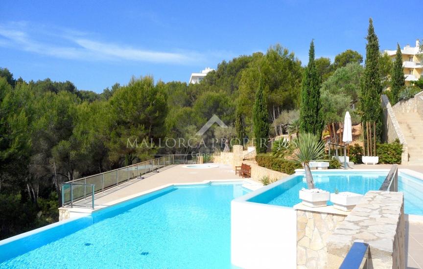 property-for-sale-in-mallora-sol-de-mallorca-calvia--MP-1453-14.jpg