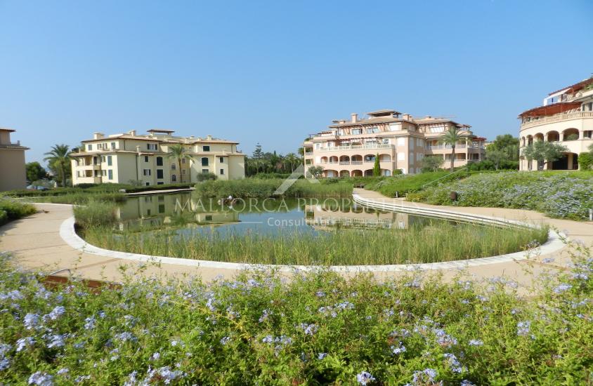 property-for-sale-in-mallora-costa-d-en-blanes-calvia--MP-1464-23.jpg