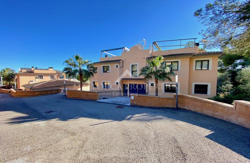 property-for-sale-in-mallora-camp-de-mar-andratx--MP-1466-15.jpeg