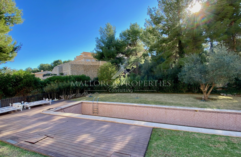 property-for-sale-in-mallora-camp-de-mar-andratx--MP-1466-17.jpeg