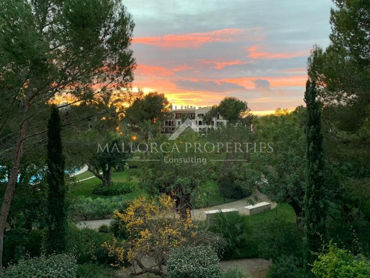 property-for-sale-in-mallora-bendinat-calvia--MP-1479-01.jpg