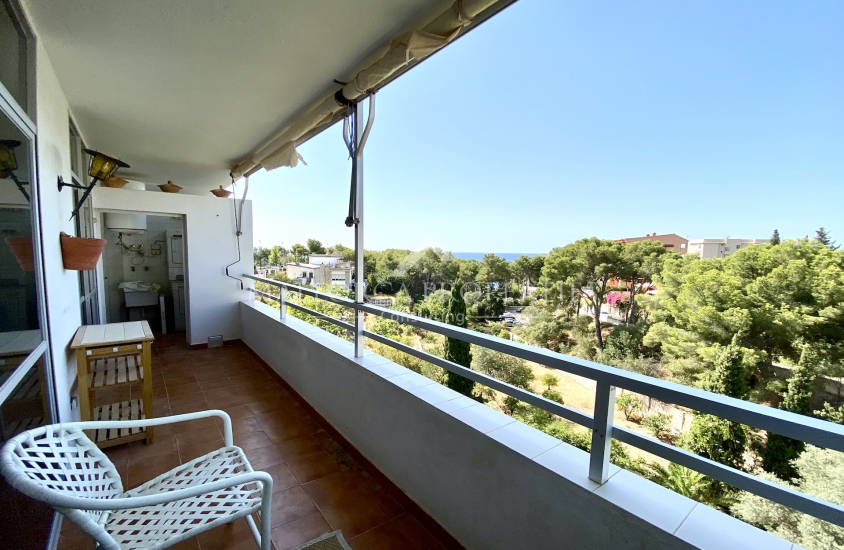 property-for-sale-in-mallora-portals-nous-calvia--MP-1487-00.jpeg
