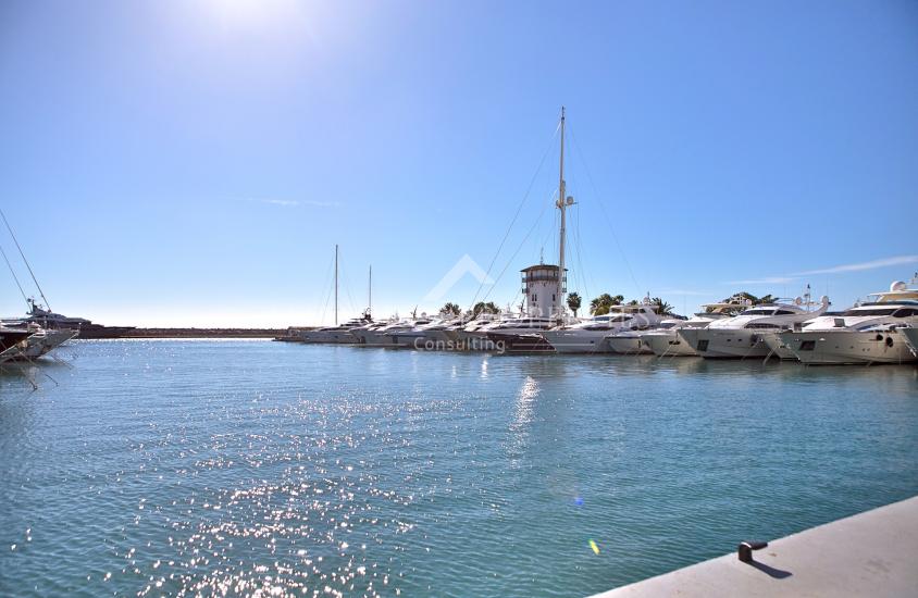 property-for-sale-in-mallora-puerto-portals-calvia--MP-1494-00.jpg