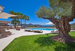 property-for-sale-in-mallora-port-d-andratx-andratx--MP-1500-00.jpg