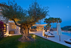 property-for-sale-in-mallora-port-d-andratx-andratx--MP-1500-24.jpg