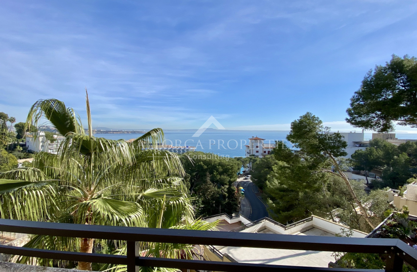 property-for-sale-in-mallora-illetes-calvia--MP-1510-15.jpeg