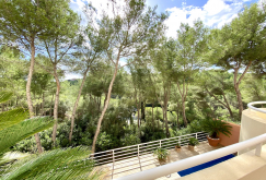 property-for-sale-in-mallora-bendinat-calvia--MP-1524-09.jpeg