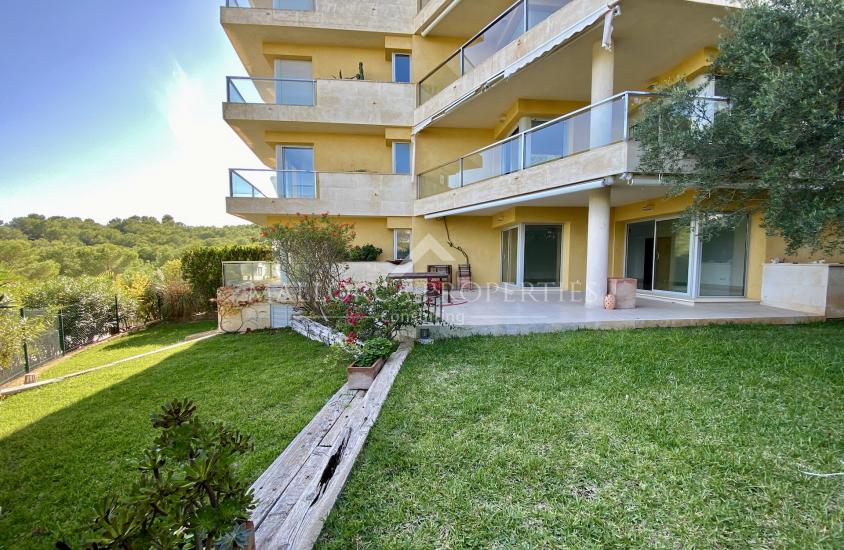 property-for-sale-in-mallora-sol-de-mallorca-calvia--MP-1526-00.jpeg
