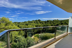 property-for-sale-in-mallora-sol-de-mallorca-calvia--MP-1526-19.jpeg