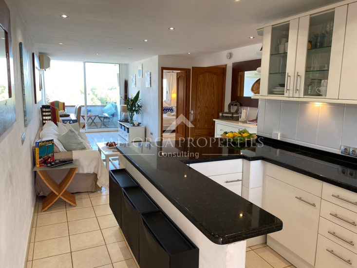 property-for-sale-in-mallora-portals-nous-calvia--MP-1535-00.jpg