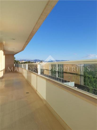 property-for-sale-in-mallora-palma-rural-palma--MP-1547-12.jpg