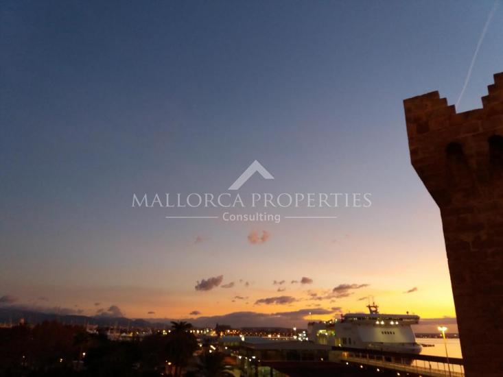 property-for-sale-in-mallora-palma-rural-palma--MP-1547-14.jpg