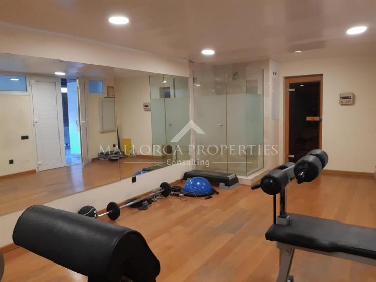 property-for-sale-in-mallora-palma-rural-palma--MP-1547-16.jpg