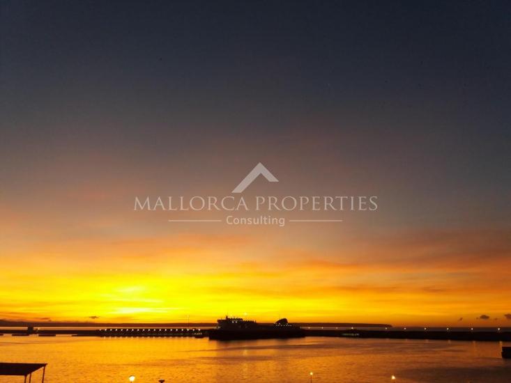 property-for-sale-in-mallora-palma-rural-palma--MP-1547-19.jpg
