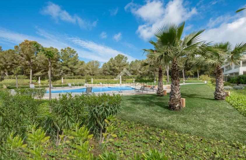 property-for-sale-in-mallora-nova-santa-ponsa-calvia--MP-1556-10.jpg